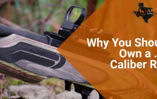 Why You Should Own a .22 Caliber Rifle 12