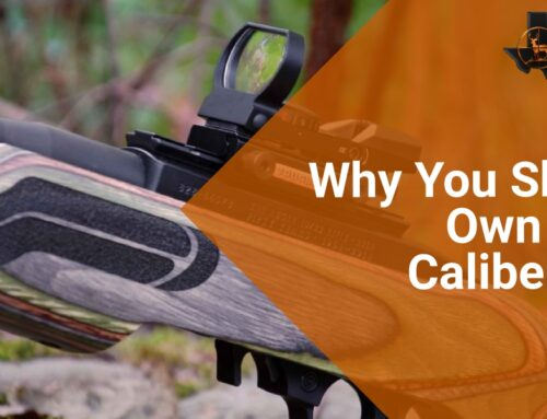 Why You Should Own a .22 Caliber Rifle