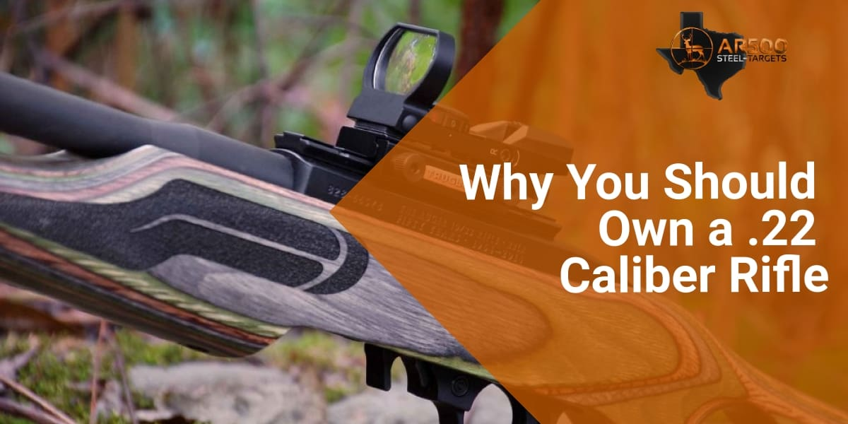 Why You Should Own a .22 Caliber Rifle 1